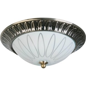 Потолочный светильник Toplight TL5050Y-02AB накладной светильник toplight dora tl5040y 02ab