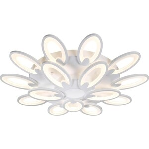 Потолочная светодиодная люстра Omnilux OML-45807-210