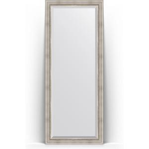 Зеркало напольное с фацетом Evoform Exclusive Floor 81x201 см, в багетной раме - римское серебро 88 мм (BY 6118) зеркало напольное с фацетом поворотное evoform exclusive floor 81x201 см в багетной раме римское серебро 88 мм by 6118