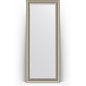 Зеркало напольное с фацетом Evoform Exclusive Floor 81x201 см, в багетной раме - хамелеон 88 мм (BY 6120)