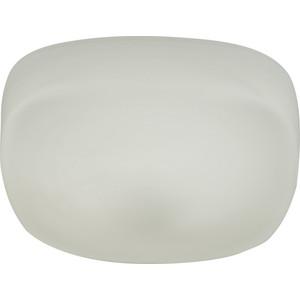 купить Потолочный светодиодный светильник IDLamp 266/25PF-LEDWhite по цене 1198.5 рублей