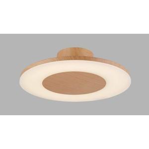 Потолочный светильник Mantra 4494