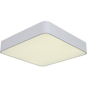 Потолочный светодиодный светильник ST-Luce SL955.502.01