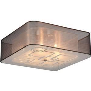 Потолочный светильник ST-Luce SL940.802.06