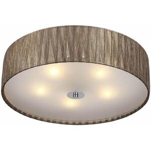 Потолочный светильник ST-Luce SL357.702.05
