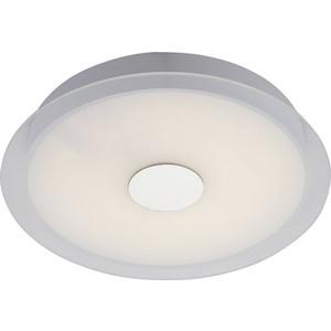 Потолочный светодиодный светильник ST-Luce SL471.552.01