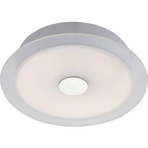 Потолочный светодиодный светильник ST-Luce SL471.502.01