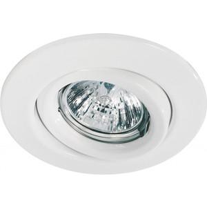 Точечный поворотный светильник Paulmann 98977