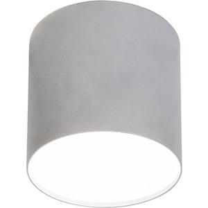 Потолочный светильник Nowodvorski 6527