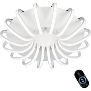 Потолочная светодиодная люстра с пультом Omnilux OML-48107-112