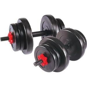 Гантель сборная Lite Weights 20 кг (10кг х 2шт) 2327LW все цены