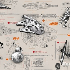 Фотообои Star Wars STAR WARS Blueprints (3,68х2,54 м)