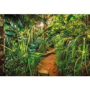 Фотообои Komar Jungle Trail (3,68х2,54 м) (8-989) фотообои komar mekka 3 88х2 7 м 8 106