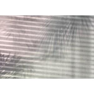 Фотообои Komar Shadow (3,68х2,48 м) (XXL4-059)