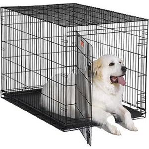 Клетка Midwest iCrate 48 Dog Crate 122x76x84h см 1 дверь черная для собак