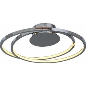 Потолочный светодиодный светильник ST-Luce SL918.102.02