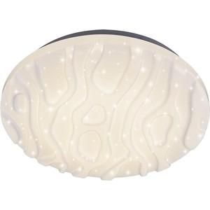 купить Потолочный светодиодный светильник с пультом IDLamp 375/40PF-LEDWhite по цене 3898.5 рублей