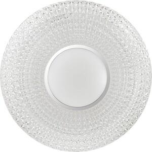 Потолочный светодиодный светильник Sonex 2048/EL все цены