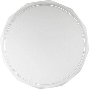 Потолочный светодиодный светильник с пультом Sonex 2045/EL