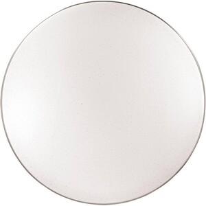 Потолочный светодиодный светильник с пультом Sonex 2051/EL