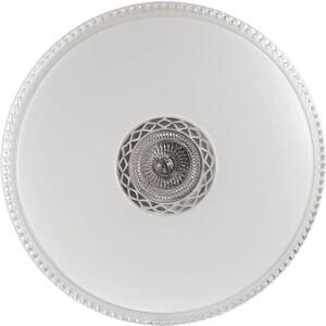 цена на Потолочный светодиодный светильник с пультом Sonex 2044/EL