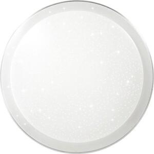 Потолочный светодиодный светильник с пультом Sonex 2015/E