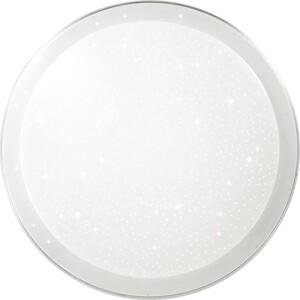 Потолочный светодиодный светильник Sonex 2015/D