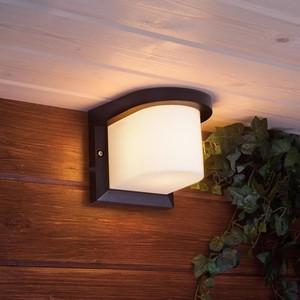 Уличный настенный светильник Elektrostandard 4690389106248