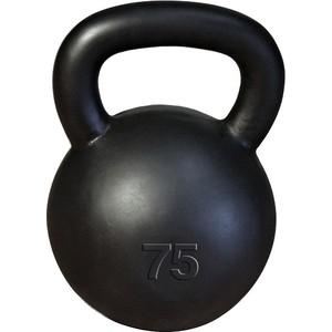 Гиря Body Solid 34 кг (75lb) классическая KB75