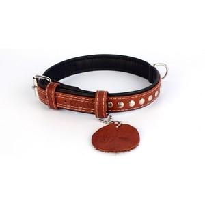 Ошейник CoLLaR SOFT кожаный двойной с металлическими украшениями ширина 20мм длина 30-39см коричневый верх, черный низ для собак (7197) фото
