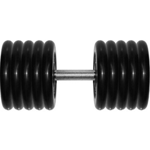 Гантель MB Barbell Профи 53,5 кг mb barbell mb 1 13 50 mm grey