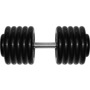 Гантель MB Barbell Профи 58,5 кг mb barbell mb 1 13 50 mm grey