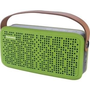Портативная колонка TELEFUNKEN TF-PS1230B зеленый/коричневый портативная акустика telefunken tf ps1230b красный коричневый