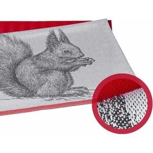 Набор кухонных полотенец Hobby home collection Squirrel коралловый 50x70 2 штуки (1501001629)