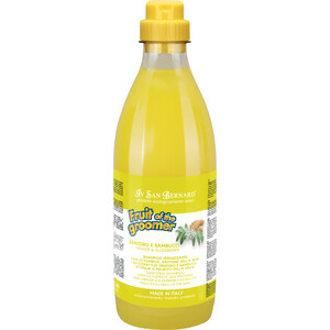 Шампунь Iv San Bernard Fruit of the Grommer Ginger & Elderbery Shampoo против раздражений и перхоти для любого типа шерсти животных 1 л