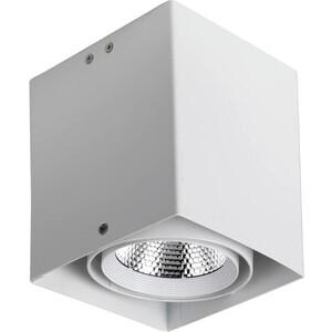 Потолочный светодиодный светильник Favourite 1986-1U