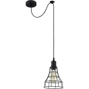 Подвесной светильник Maytoni T449-PL-01-B цена и фото