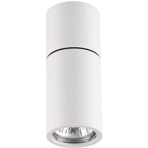 Потолочный светильник Odeon 3582/1C