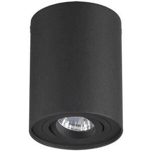 Потолочный светильник Odeon 3565/1C