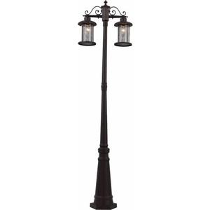 Уличный фонарь ST-Luce SL080.425.02