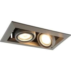 Встраиваемый светильник Artelamp A5941PL-2GY