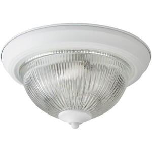 Потолочный светильник Artelamp A9370PL-2WH