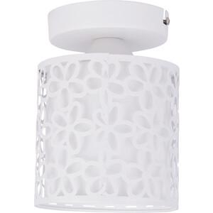 Потолочный светильник Arte Lamp A8349PL-1WH потолочный светильник arte lamp a1110pl 1wh