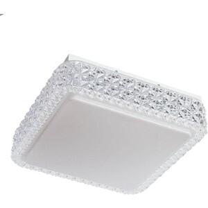 Потолочный светодиодный светильник Arte Lamp A1570PL-1CL