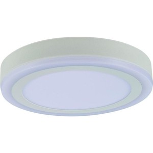 Потолочный светодиодный светильник Artelamp A7824PL-2WH цены