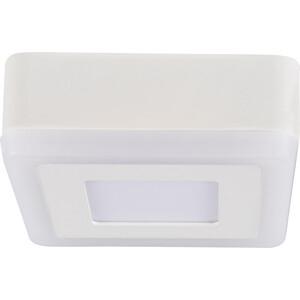 Потолочный светодиодный светильник Artelamp A7706PL-2WH цены
