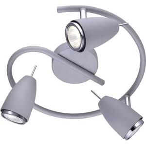 Спот Artelamp A1966PL-3GY
