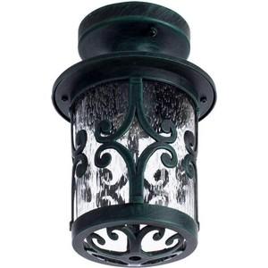 Уличный потолочный светильник Artelamp A1453PF-1BG цена
