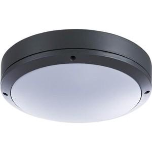Уличный потолочный светильник Arte Lamp A8154PF-2GY цена 2017