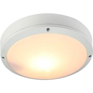 Уличный потолочный светильник Artelamp A8154PF-2WH